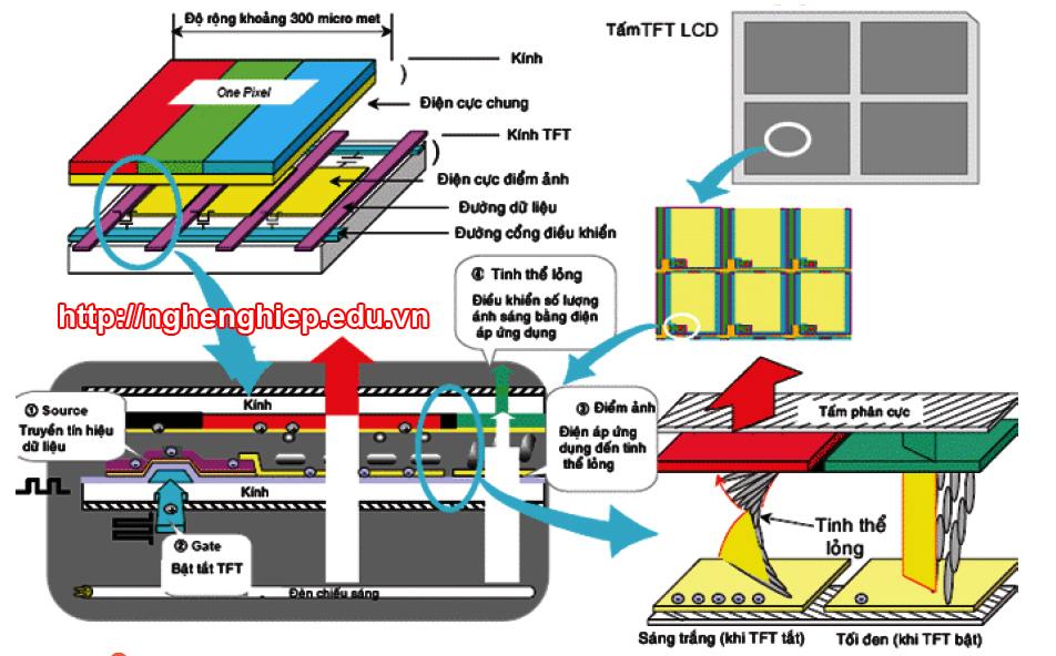Hình 2 - Cấu trúc của một điểm ảnh trên màn hình LCD