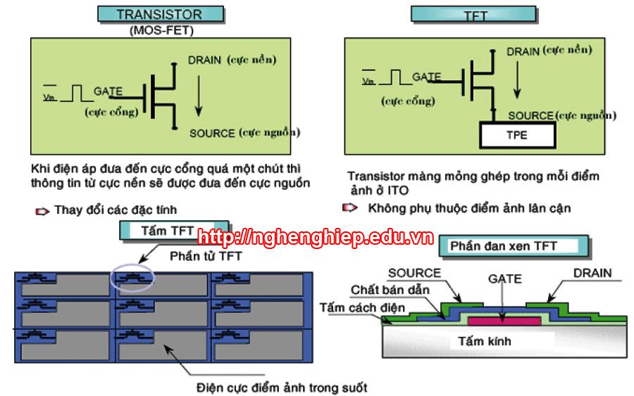 Hình 1 - Màn hình TFT sử dụng các Transistor có điện cực trong suốt