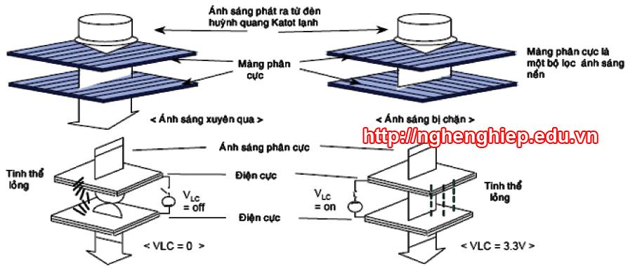 Hình 3 - Sử dụng tinh thể lỏng để điều khiển ánh sáng đi qua hai lớp màng phân cực được sẻ rãnh vuông góc.
